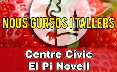 Cursos Pi Novell